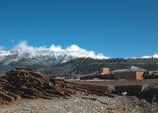Austrian sawmill industry on an upward trend