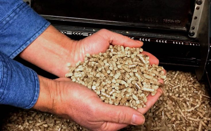 Finnish electricity company opens 92MW wood pellet plant