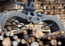 High lumber prices to cover duties imposed by the US on Canadian lumber imports, says Moody's
