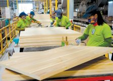 Vietnam sharply rising wood products exports might determine a lack of raw materials