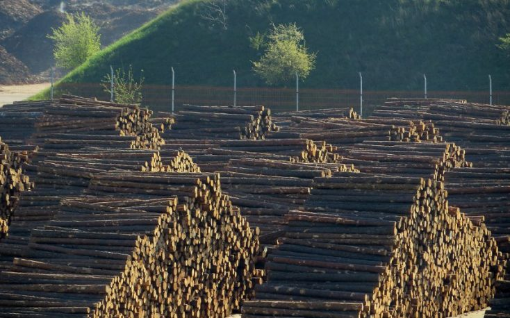 Logs buyers in China buy directly from exporters avoiding US sawmills
