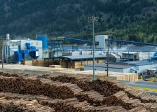 US Northwest sawmills work on building log inventories for the winter season