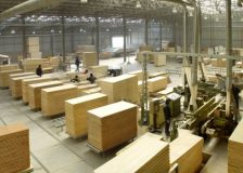 Arauco revenues negatively impacted by US-China trade war