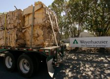 Weyerhaeuser reduces lumber production by 20%