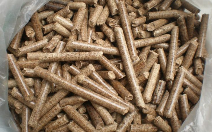 Pellet production in Germany reaches record high