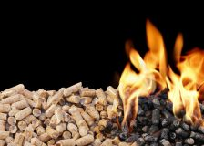 France considers possibility of converting coal plants to wood pellets