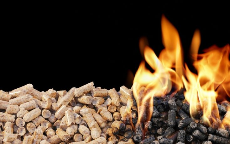 Current trends in Europe's industrial wood pellet market