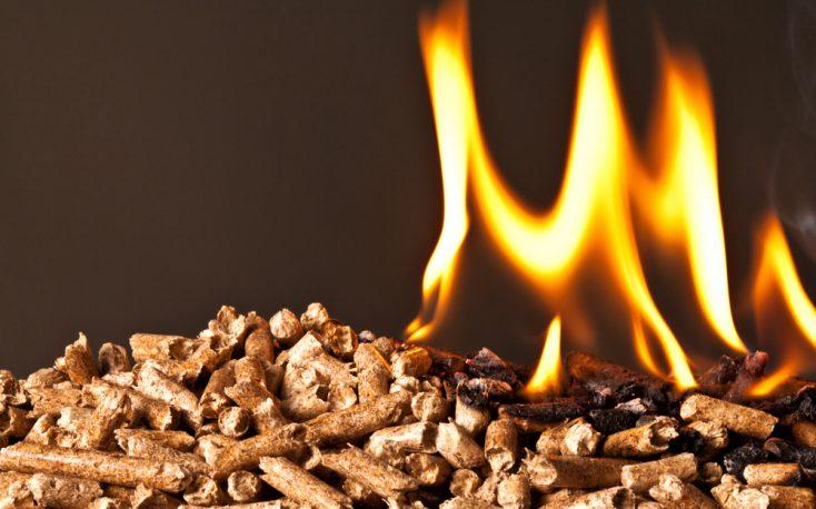 New biomass subsidies schemes in Europe