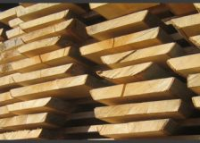 Croatia to host the largest unedged beech lumber sawmill