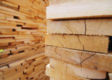 US softwood lumber prices pick up slightly after weeks of drop