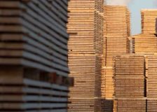 European countries are rapidly expanding market shares on China's softwood import market