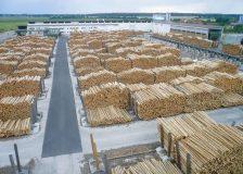 Prosecutors in Romania investigate Holzindustrie Schweighofer for alleged illegal logging activities