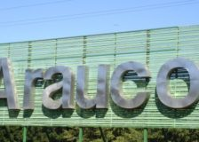 Arauco's sales down 18.8% in Q1/2020