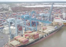 Timber backlogs increase at the Douala Port