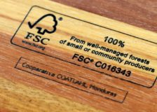 Certified tropical timber a key topic at the STTC conference