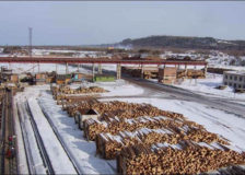 Russia's Titan Group increases sawnwood and wood pellet production