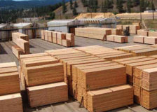 San Group starts construction of a new sawmill in Canada