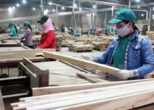 Record-high values for Vietnamese wood products exports during 2018