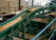 Sawmill industry in Austria forecast at record levels in 2018