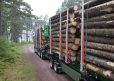 Södra lowers the spruce and pine logs prices as a result of economy slowdown