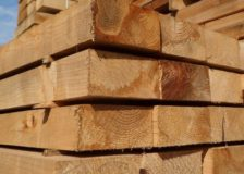 Softwood log stocks on the rise all around China