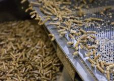 Pinnacle Renewable Energy halts Alberta wood pellet plant operations