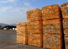 France: Lumber price list for Q4/2018