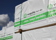 Segezha Group launches 250,000 m2/yr CLT plant construction