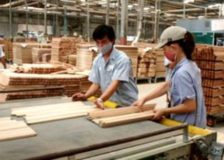 Vietnam needs to invest in production capacity as to boost wood products exports