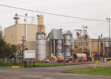 Arauco's particleboard operations in St. Stephens, Canada to cease by the end of 2019