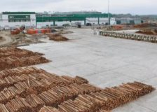 Russian timber industry in search for new markets