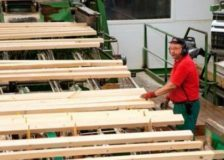 Schneider to build a large sawmill in Germany