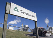 Wood demand could stay strong for the next decade, says Weyerhaeuser CEO
