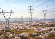 Power cuts in China hit factories