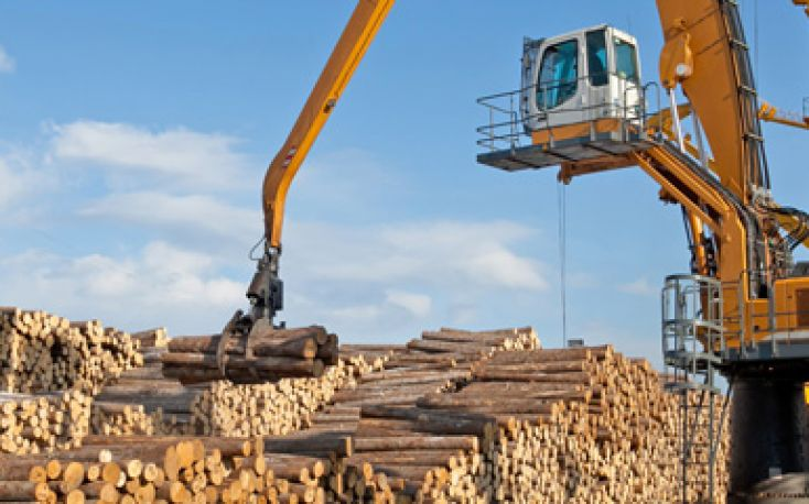 RFP Group plans to build wood processing plant in Russia's Far East