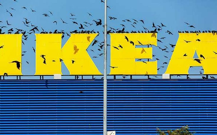 IKEA purchases first forest asset in US