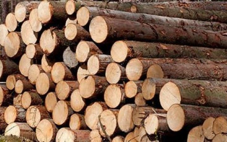 European spruce logs and lumber exports to China see strong rise in Q1-Q3/2020