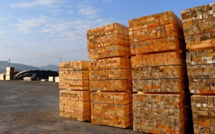 France: Lumber prices list for Q1/2019