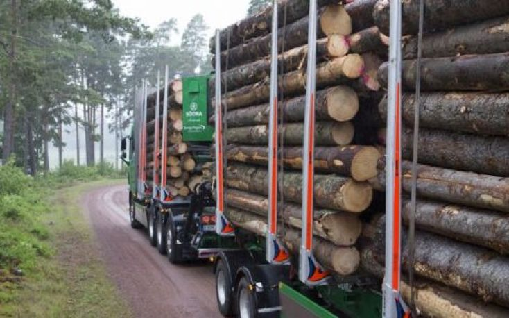 Södra to increase the price for spruce timber