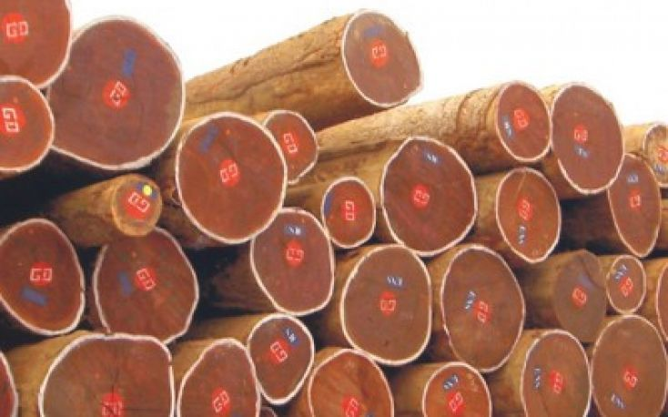 Tropical timber trade in West Africa sluggish